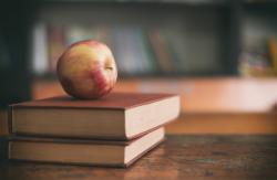 Otvorenie škôl vzbudzuje vášne
